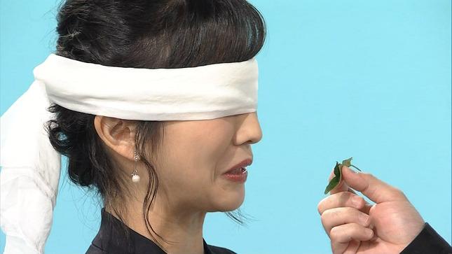 林田理沙 植物に学ぶ生存戦略 ブラタモリ 18