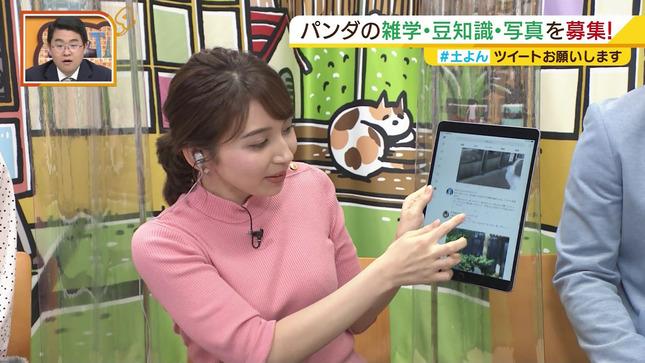 野嶋紗己子 土曜のよんチャンTV 5