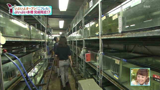 豊崎由里絵 ちちんぷいぷい 07