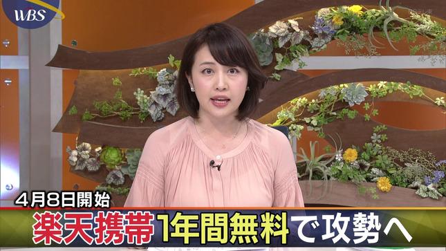 相内優香 ワールドビジネスサテライト 15