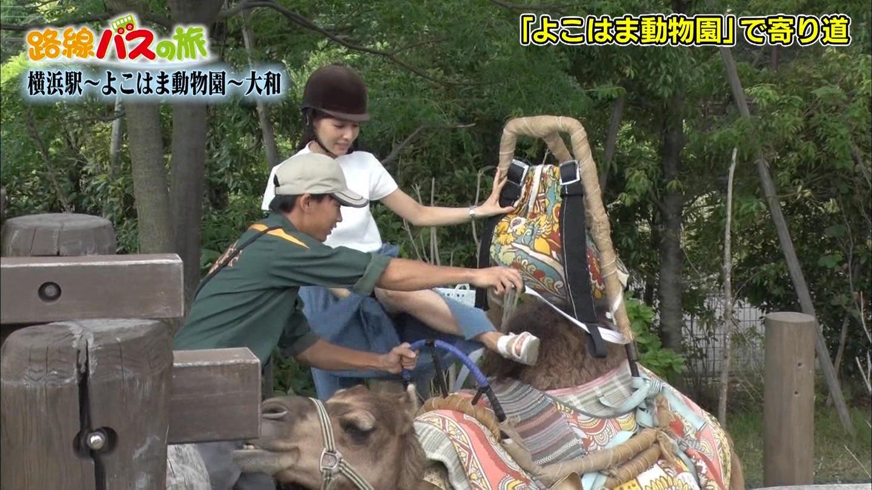 田中みな実アナ ラクダにまたがろうとしてスカートの中が見えてしまうハプニング!!