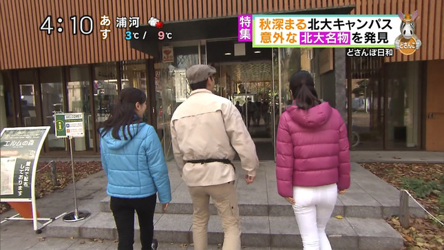 大慈弥レイ どさんこワイド 8