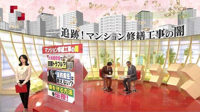 田中泉 クローズアップ現代+ 19