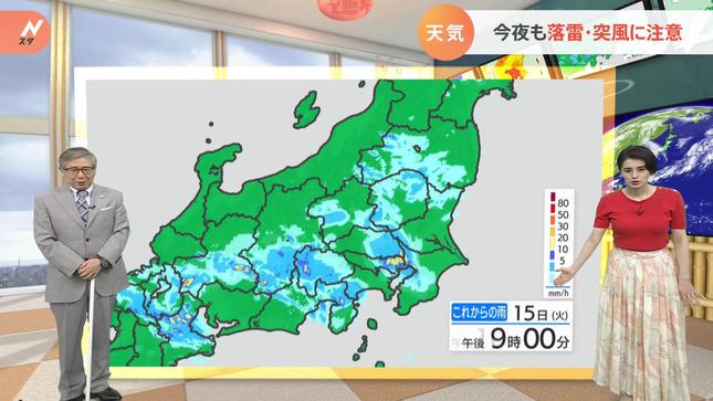 ホラン千秋 Nスタ 17