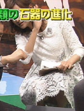 徳島えりかアナ!特番で生パンティーもろ見え事故!しゃがみこんだ場面でスカートの中が丸見え
