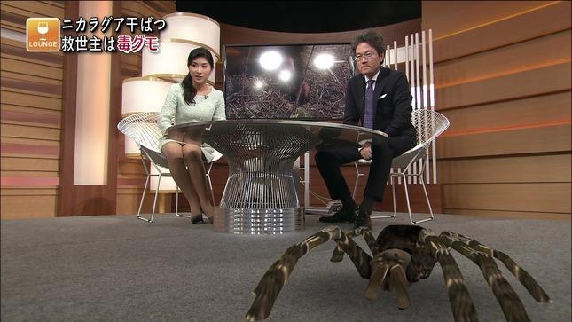 加藤桂子 国際報道201404