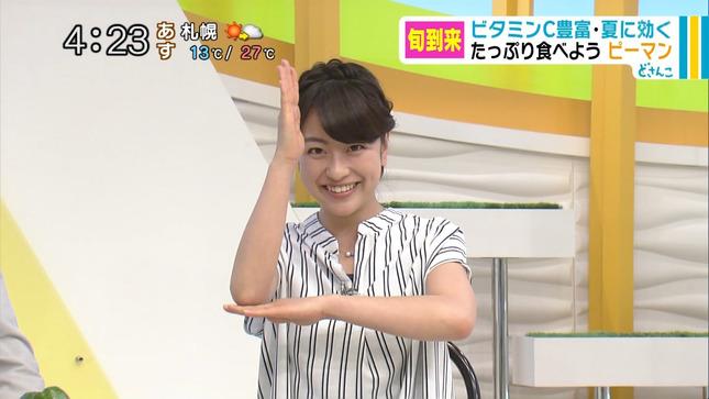 村雨美紀 どさんこワイド 10
