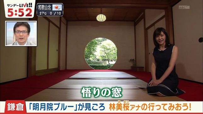 林美桜 サンデーLIVE!! 8