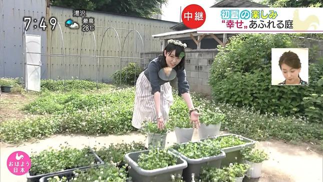 武田涼 おはよう日本 7