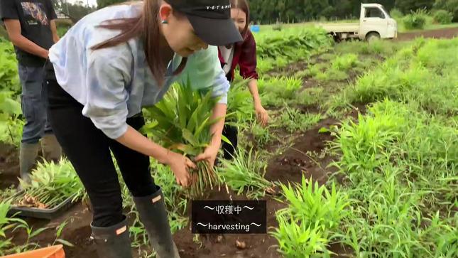 トラウデン直美農業チャンネル 7