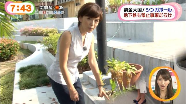 中野美奈子 めざましテレビ 12