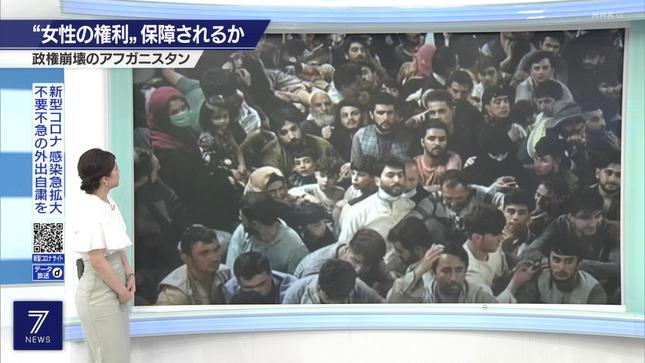 赤木野々花 NHKニュース7 首都圏ニュース845 7
