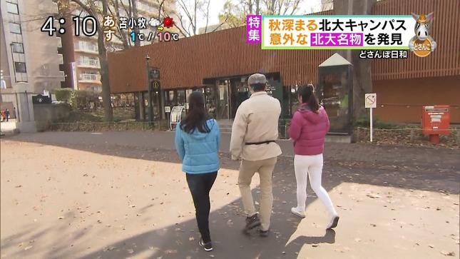 大慈弥レイ どさんこワイド 7
