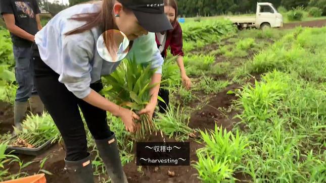 トラウデン直美農業チャンネル 21