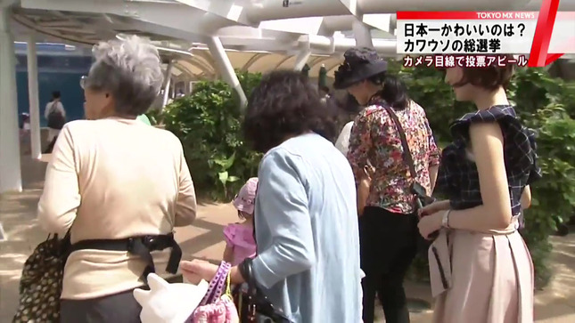 牧野結美 TOKYO MX NEWS 5