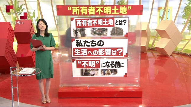 田中泉 クローズアップ現代+ 4