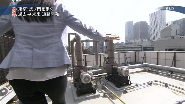 大江麻理子 ワールドビジネスサテライト 08