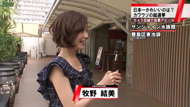 牧野結美 TOKYO MX NEWS 1