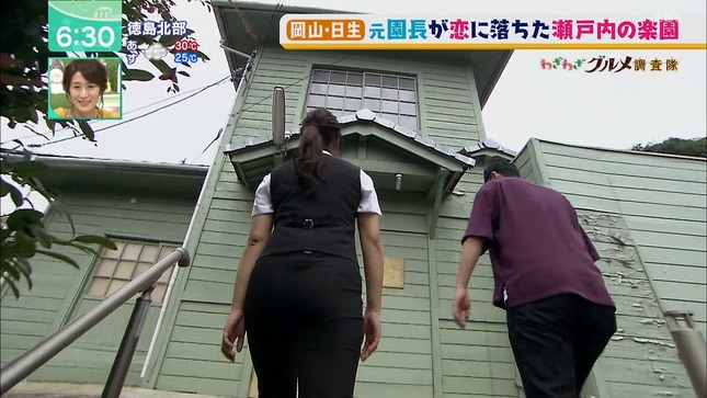 辻沙穂里 ミント! 9