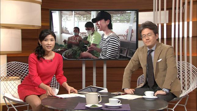 加藤桂子 国際報道2014 05
