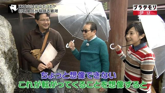 林田理沙 ブラタモリ おはよう日本4