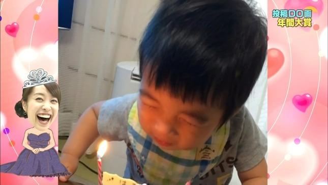 片山千恵子 投稿DO画 動物の赤ちゃん ニッポン芸能史 08