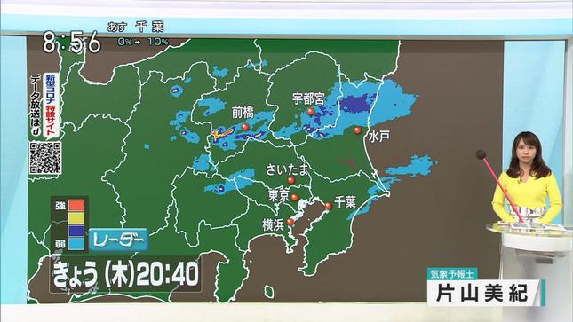 片山美紀 首都圏ネットワーク 6