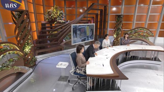 相内優香 池上ワールド 日本中が驚いた大事件SP WBS 7