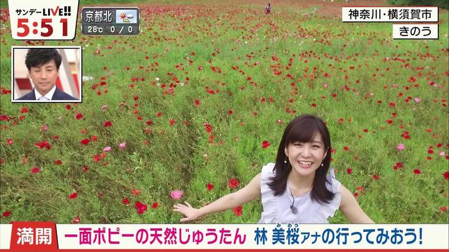 林美桜 サンデーLIVE!! 13