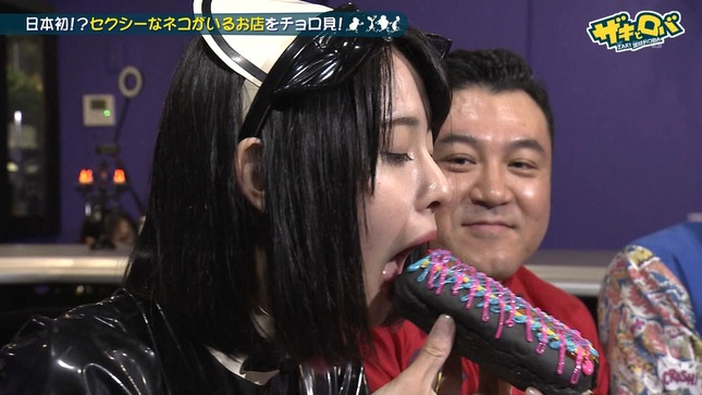 望木聡子 ザキとロバ 16