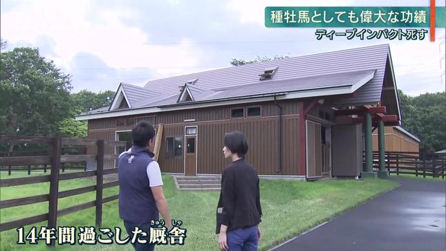 森葉子 報道ステーション 12