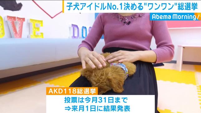 田中萌 AbemaMorning 16