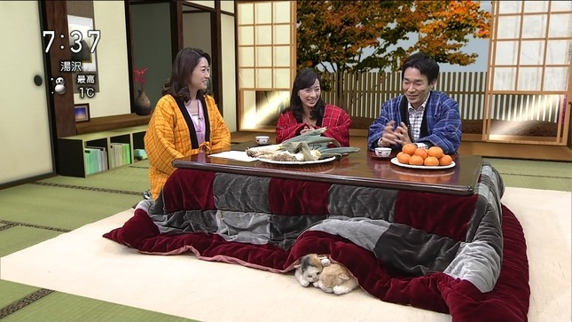 牛田茉友 おはよう日本 15