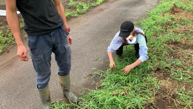 トラウデン直美農業チャンネル 22