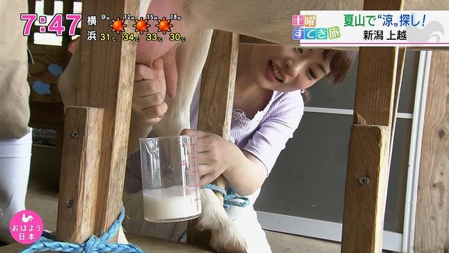 深堀遥菜 おはよう日本 11