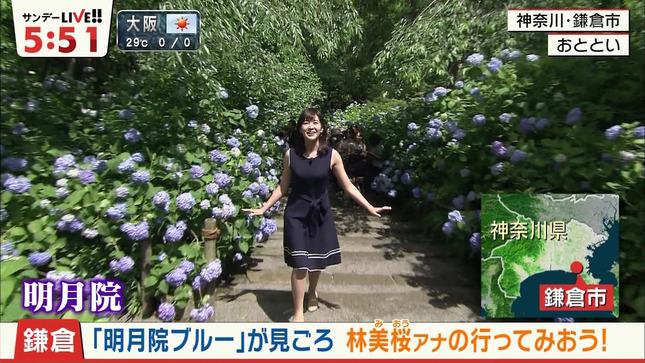 林美桜 サンデーLIVE!! 3