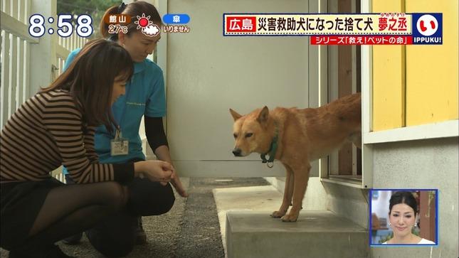 枡田絵理奈 いっぷく! 24