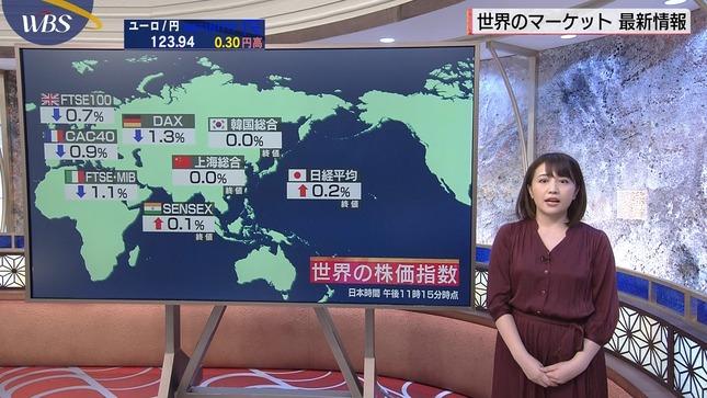 相内優香 ワールドビジネスサテライト 14