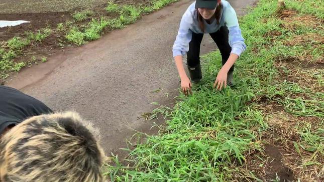 トラウデン直美農業チャンネル 14