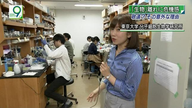 橋詰彩季 ニュースウオッチ9 5