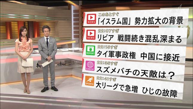 黒木奈々 国際報道2014 15