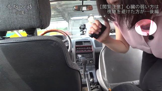 虎谷温子 辛坊の旅 17