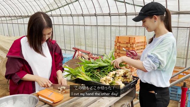 トラウデン直美農業チャンネル 17