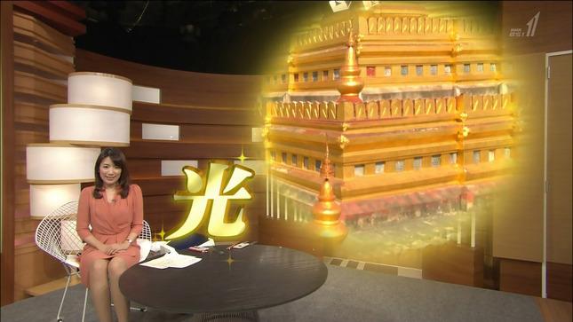 藤田真奈美 国際報道2016 5