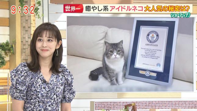 斎藤ちはる モーニングショー 10