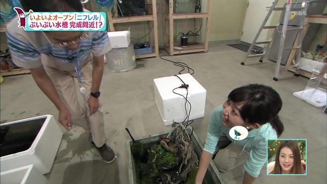豊崎由里絵 ちちんぷいぷい 14