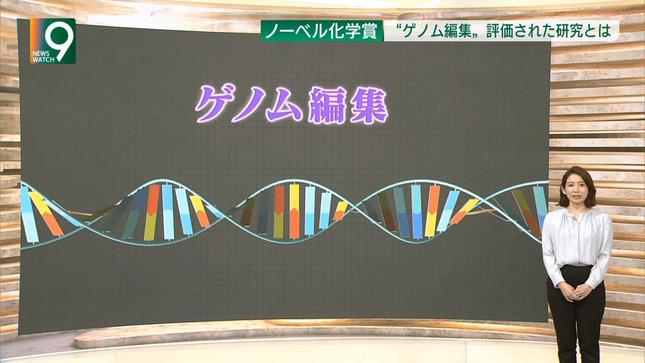 橋詰彩季 列島ニュース おはよう東海  ニュースウオッチ9 6