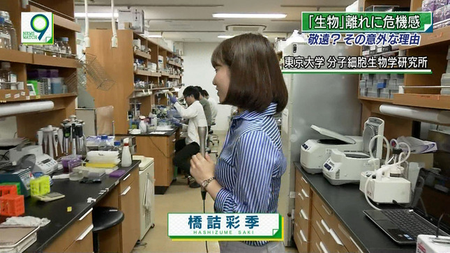 橋詰彩季 ニュースウオッチ9 4