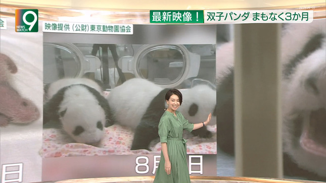 和久田麻由子 ニュースウオッチ9 東京2020パラリンピック 7