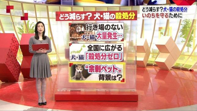 田中泉 クローズアップ現代+ 9